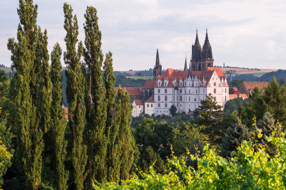 Meißen: Blick zur Albrechtsburg