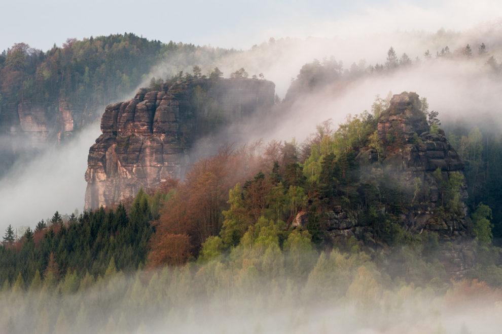 Sächsische Schweiz: Felslandschaft im Morgennebel